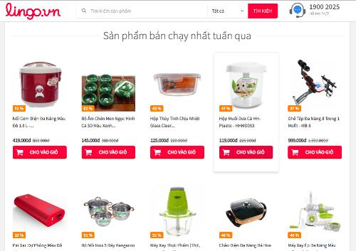 Lingo.vn từng tham vọng là website TMĐT số 1 Việt Nam