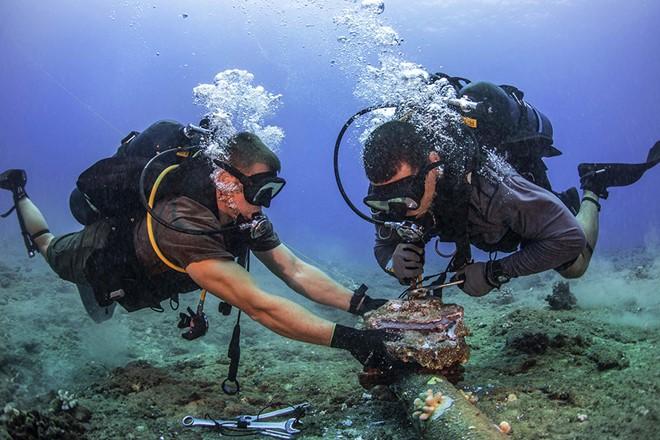 Cáp biển rất dễ bị xâm phạm.