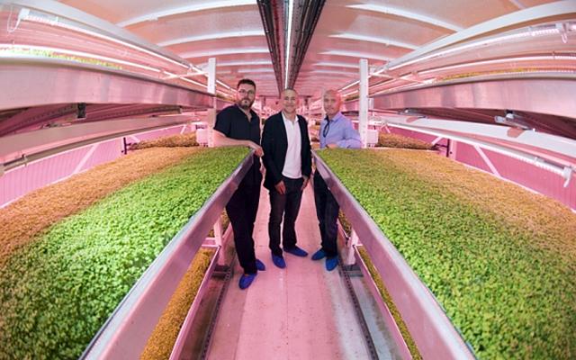 Ý tưởng đã nhận được sự đồng ý cho trưng dụng căn hầm của cơ quan vận tải London, đồng thời nhận khoản đầu tư hơn 1 triệu USD (hơn 20 tỷ đồng) từ đầu bếp Michel Roux – người đăng ký mua các loại rau củ trồng tại căn hầm để cung cấp cho nhà hàng của ông.