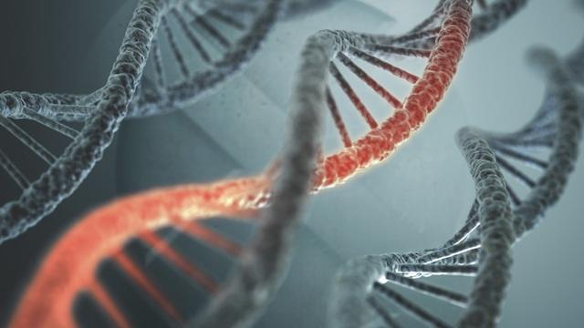 Công nghệ gen và di truyền vẫn còn rất nhiều điều cần khám phá.