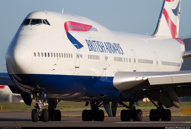 Ong nhỏ bé hạ gục Boeing 747 to xác.