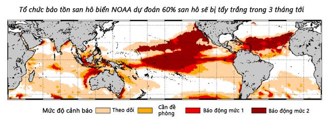 Nguy cơ san hô bị tẩy trẳng từ tháng 10/2015 đến tháng 1/2016. (Nguồn: NOAA)