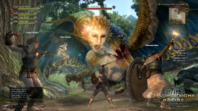 Dragons Dogma Online - April 2015 screenshot 2