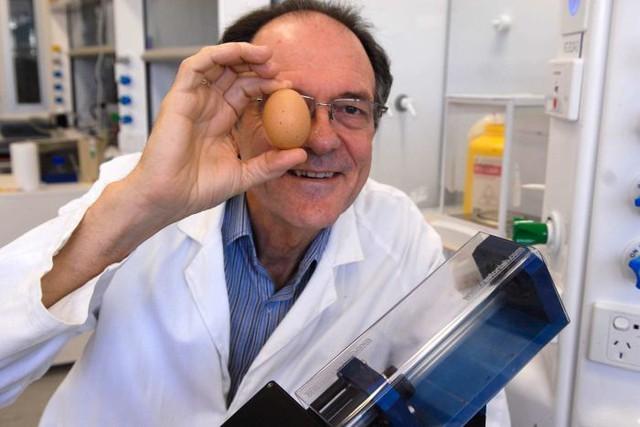 Collin Raston cùng một quả trứng.