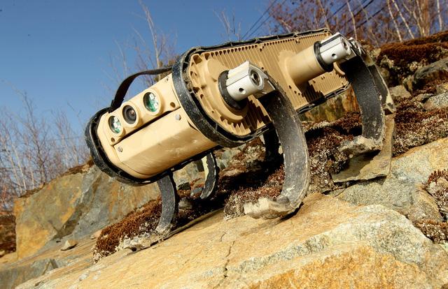 Robot RHex sở hữu hình dáng thoạt nhìn giống một chú dái cá.