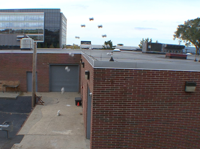 Pha nhảy từ dưới đất lên trên tầng một tòa nhà của robot Sand Flea.