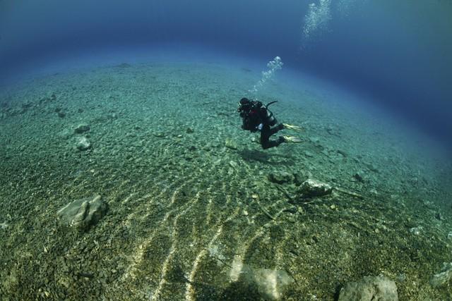 Do dưới đáy hồ rất nhiều sỏi đá nên cây cối không thể sinh trưởng.