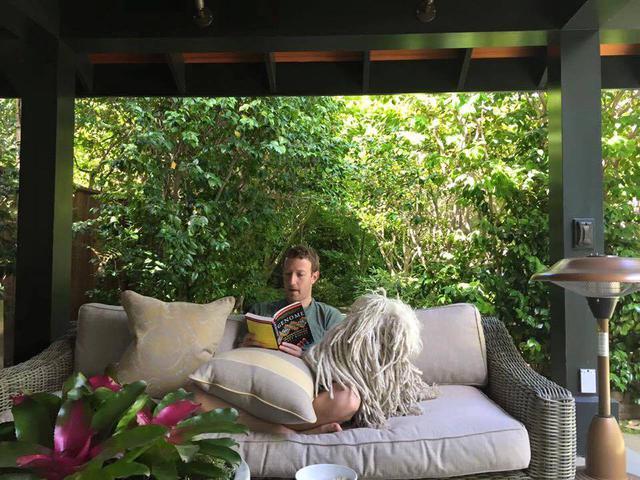 Một trong những thói quen yêu thích của Mark Zuckerberg là ngồi hàng giờ đọc sách về kinh tế, văn hóa, lịch sử, công nghệ,...