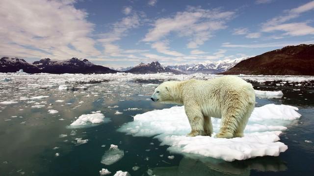 Trái Đất nóng lên sẽ gây tan băng ở hai cực.