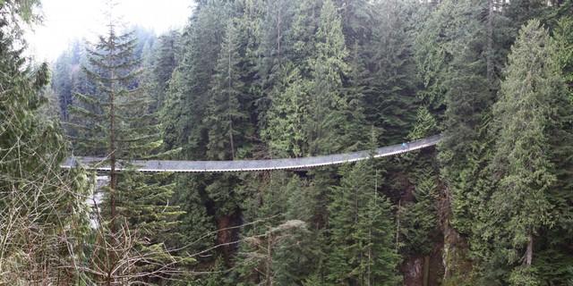 Nằm trong khu rừng ở Bắc Vancouver tại Canada, cầu treo Capilano là nơi hoàn hảo để bạn trải nghiệm cảm giác hãi hùng.