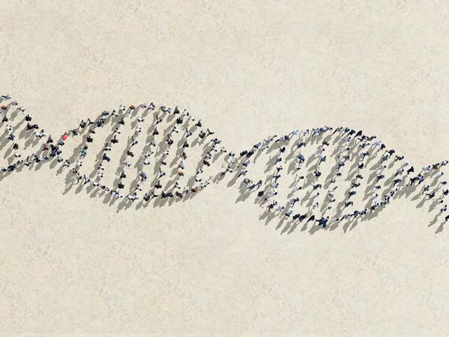 Chỉ khoảng 0.001% dân số chứa trong mình những bộ gen đẳng cấp này.