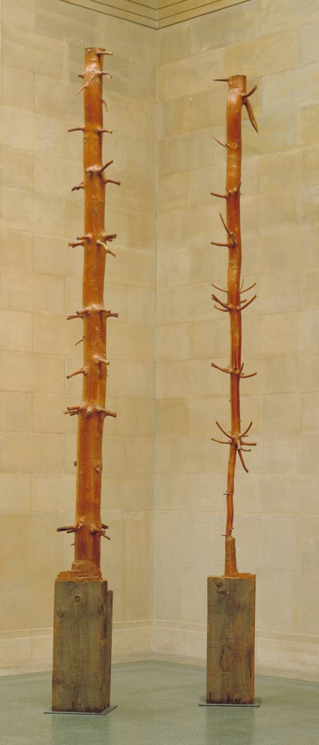 Tác phẩm năm 1980 của Penone.