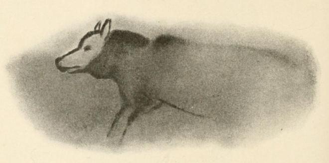 Bức vẽ về chó trên nền hang động cổ đại.