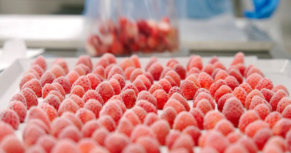 Ngành công nghiệp thực phẩm Nhật Bản thích ứng với đại dịch nhờ kỹ thuật đông lạnh công nghệ cao