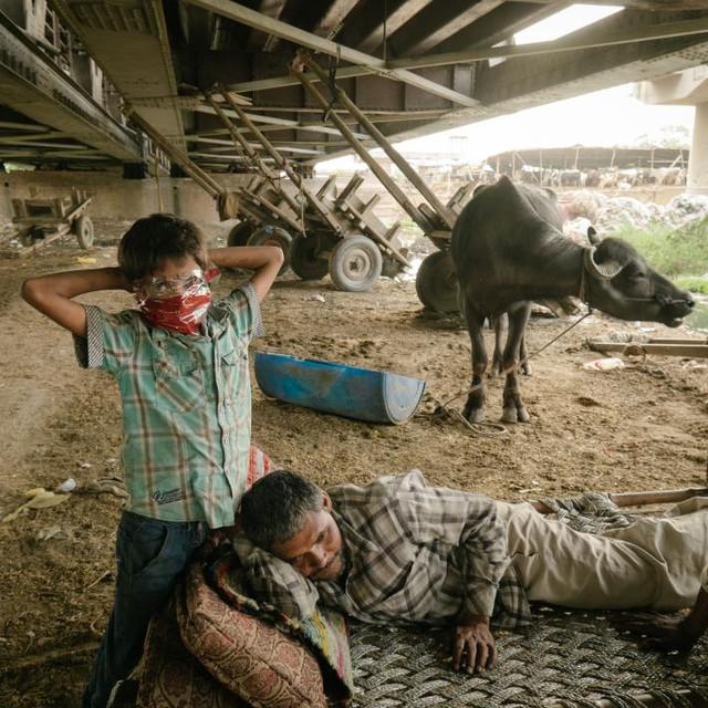 Hai cha con sống ngay dưới gầm cầu, hàng ngày vẫn nhặt ve chai kiếm sống
