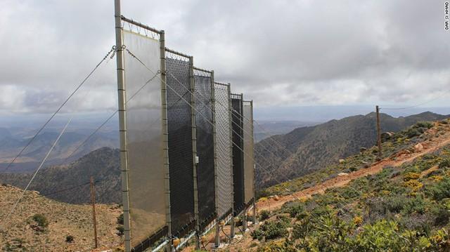 Những tấm lưới thu hoạch hơi nước
