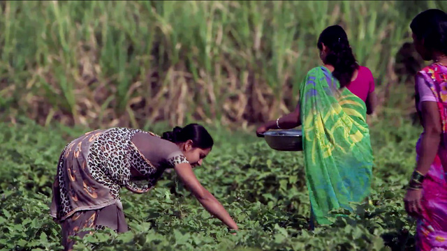 Những người phụ nữ ở ngoại ô Pune sẽ vẫn đi làm cho tới vài ngày trước khi sinh