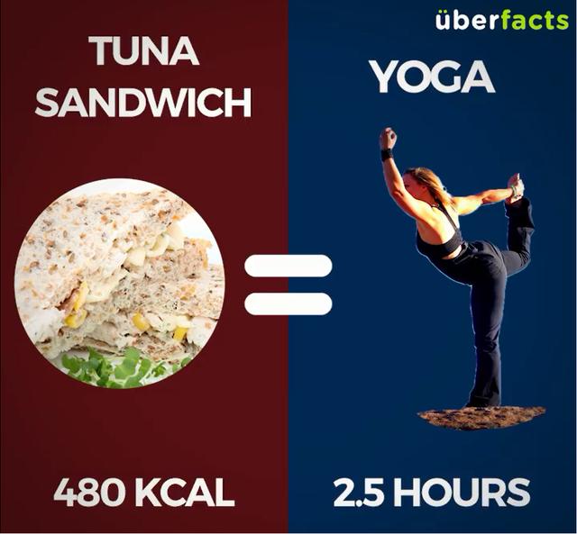 Sandwich cá ngừ (480Kcal) = Tập Yoga 2,5 tiếng