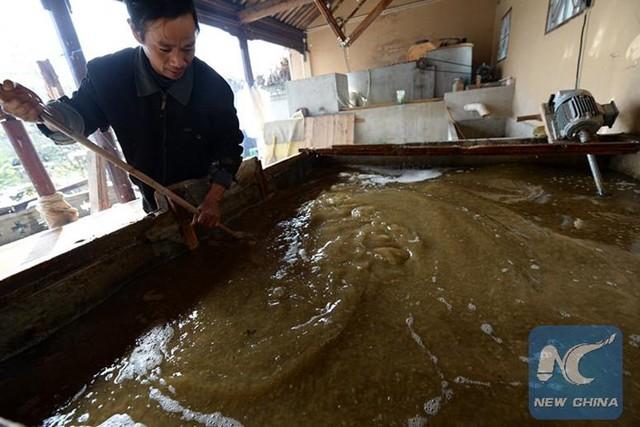 Sau khi phân gấu trúc được rửa sạch và đánh nhỏ, chúng được trộn với hỗn hợp vỏ cây dâu tằm và dây leo