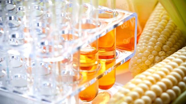 Xi-rô ngô hàm lượng cao fructose chứa chất hóa học nguy hiểm