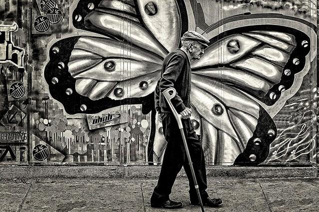 Một cụ ông tình cờ đi ngang qua bức tranh tường tạo nên hiệu ứng như bất ngờ có thêm một đôi cánh. Bức ảnh tuy chỉ mang hai tông đen trắng nhưng mang thông điệp về sự khắc nghiệt của thời gian