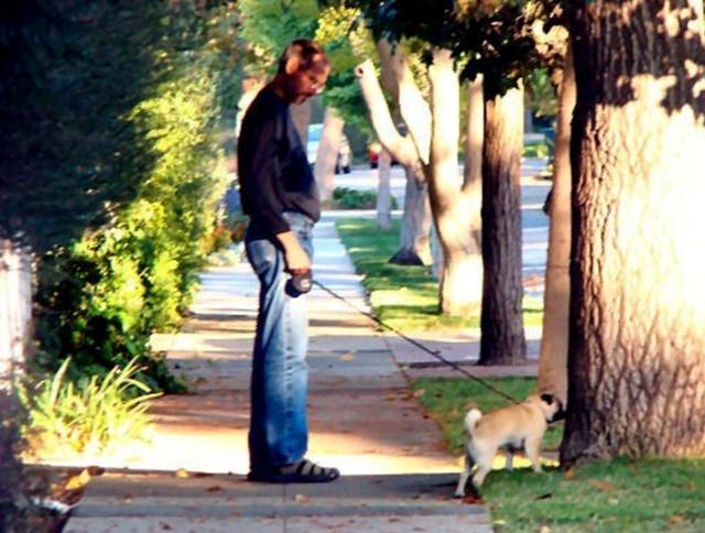 Một bức ảnh được cho là của Steve Jobs