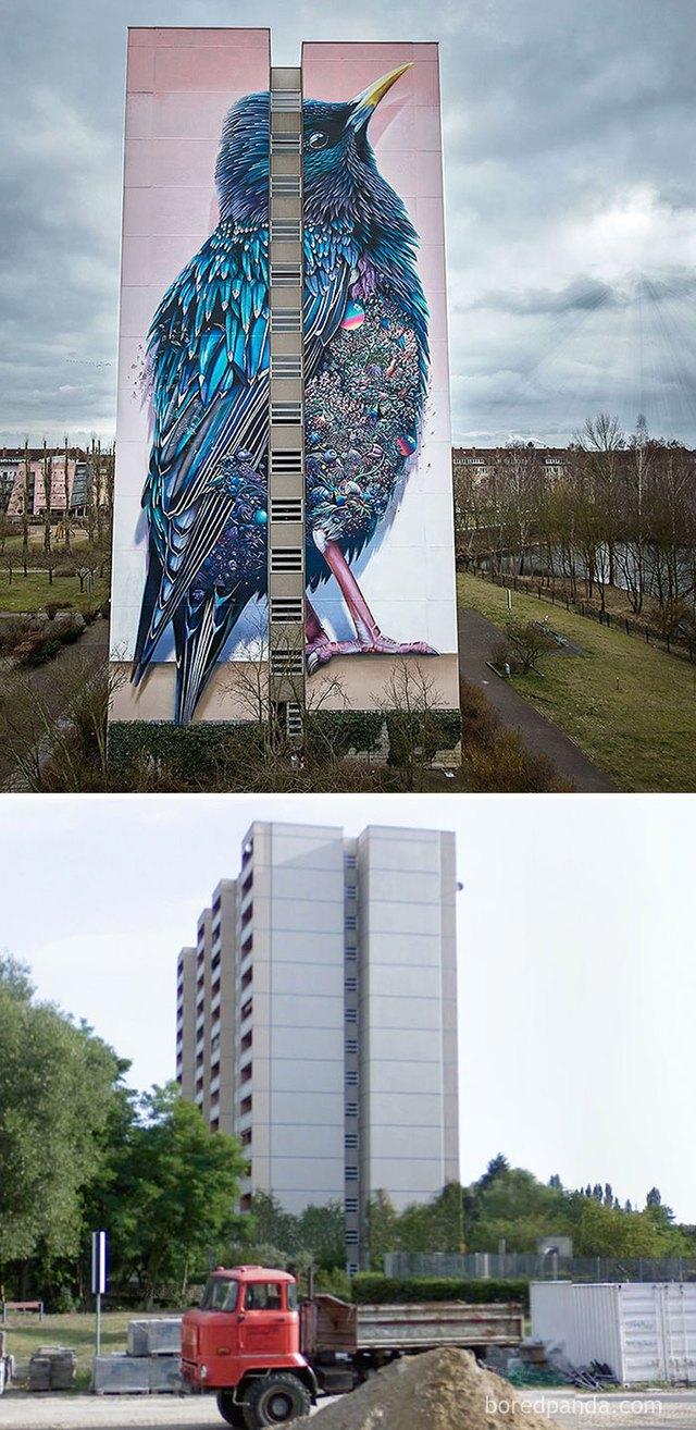 Tòa chung chư nhàm chán bỗng chốc trở nên nổi bật nhờ bức tranh chú chim khổng lồ cực kỳ chân thực.