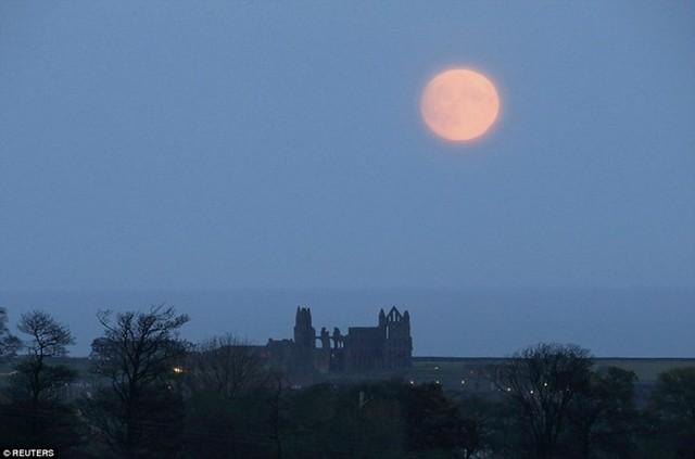 Mặt trăng mọc ở nước Anh ngày 13/11. Đây chưa phải thời điểm trăng tròn nhất. Ảnh: Reuters.