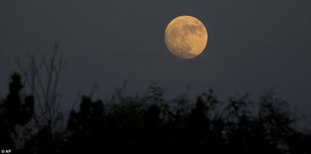 Mặt trăng nhìn từ thung lũng Hefer ở Israel. Vệ tinh của trái đất sẽ chạm tới cận điểm vào lúc 8h52 sáng ngày 14/11 theo giờ chuẩn miền Đông (EST, 20h52 ngày 14/11 giờ Hà Nội) và trăng tròn sẽ đạt đỉnh trong khoảng 2-3 giờ sau đó. Ảnh: AP.