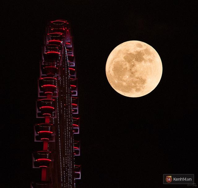 Mặt trăng vừa to vừa sáng ẩn hiện cùng vòng xoay ở Đà Nẵng (Ảnh: Khathinh)