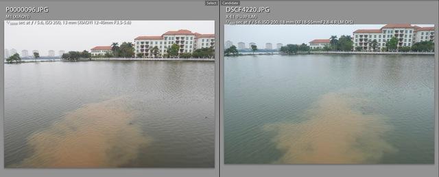 Trong khi ảnh của X-E1 (phải) bị ngả xanh, thì Yi M1 (trái) lại rất thật.