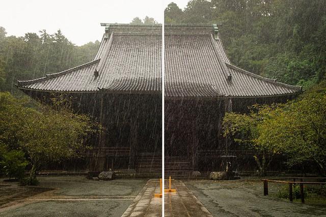 Nửa bên trái được chụp bằng iPhone 7, trong khi nửa còn lại bằng Leica M9-P