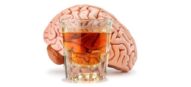 Có thể tưởng tượng chất cồn sẽ đưa não bộ của bạn về dạng động vật bậc thấp như ếch hoặc côn trùng