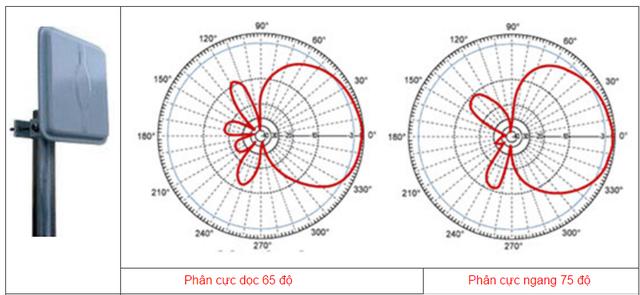 Mô tả phân cực dọc và ngang của 1 loại ăng ten định hướng.