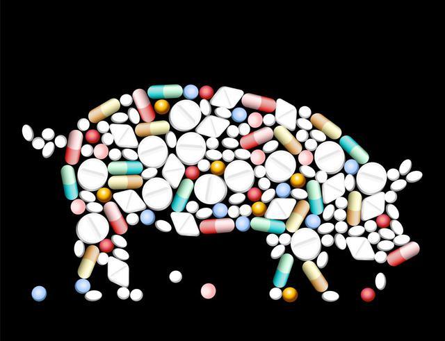 Colistin thường được trộn vào thức ăn gia súc, gia cầm để phòng bệnh, đồng thời thúc đẩy tăng trưởng