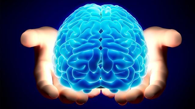 10 sự thật thú vị về bộ não chứng tỏ con người có thể làm tất