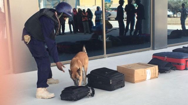 Chó nghiệp vụ là một trong những cách thức phát hiện chất nổ tại sân bay.
