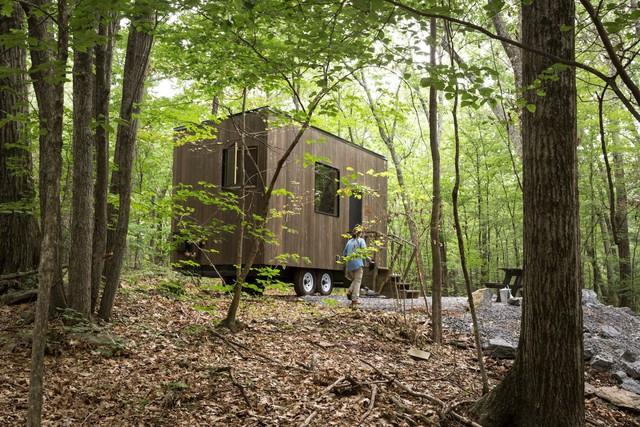 Các cabin đều được đặt trong những cánh rừng xanh mướt với không khí vô cùng dễ chịu