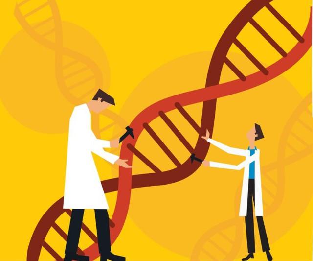 Liệu đã đến lúc chúng ta nên áp dụng công nghệ chỉnh sửa gen với con người?