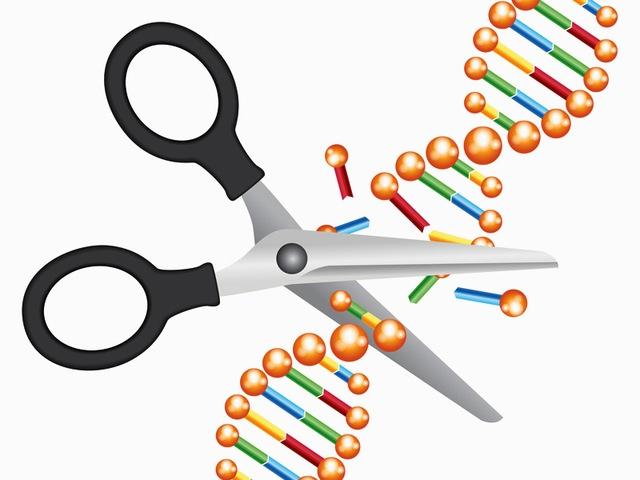 Làm thế nào để lừa được những con vi khuẩn, sử dụng chính hệ thống CRISPR quay lại cắt DNA của mình?