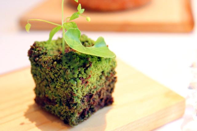 Món ăn có tên ''Mối liên kết với rừng rậm'', gồm hành tây với vụng bánh mì và rau, được tạo hình sao cho giống một hòn đá phủ rêu.