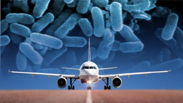 Có những người sẽ mang siêu vi khuẩn về nhà, từ chuyến du lịch cuối cùng của họ