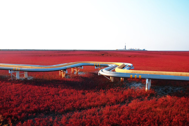 Biển Đỏ nằm ở vùng đồng bằng châu thổ sông Liaohe, khoảng 30 km về phía tây nam thành phố Panjin, Trung Quốc. Sở dĩ nó có tên gọi như vậy là bởi vẻ bề ngoài của nó, bị gây nên bởi một loại cỏ biển phát triển trong đất mặn kiềm. Loại cỏ dại này bắt đầu mọc và phát triển trong thời gian tháng 4 hoặc tháng 5 và vẫn giữ sắc xanh lá cây trong suốt mùa hè. Nhưng vào mùa thu, loại cỏ dại này lại chuyển sang một màu đỏ rực rỡ.