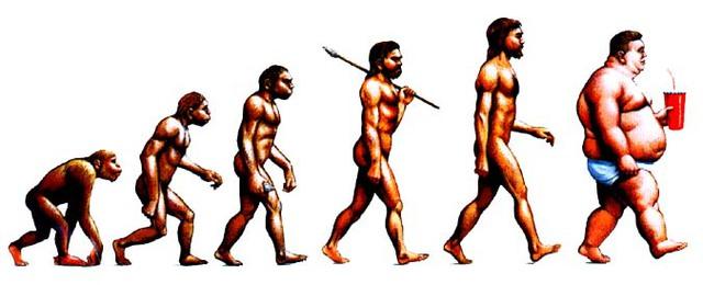 Con người đang ngày càng béo lên
