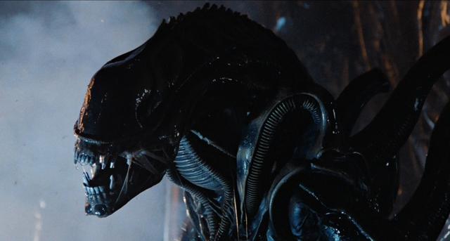 Con quái vật Xenomorph trong Aliens.