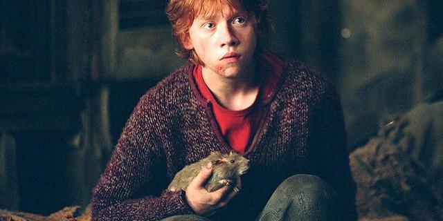 20 điều vô nghĩa mà chả mấy ai biết về bộ ba nhân vật chính của Harry Potter (P.1) - Ảnh 1.