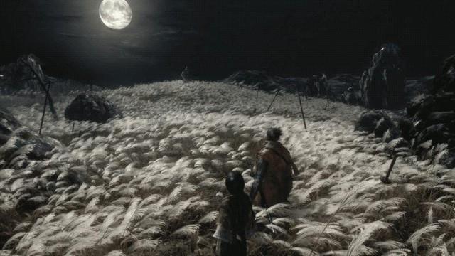 Vì sao Sekiro Shadows Die Twice lại được đánh giá cao hơn Dark Souls? - Ảnh 5.