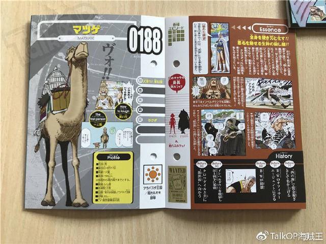 One Piece: Hé lộ thông tin về Người đàn ông nguy hiểm nhất thế giới Monkey D. Dragon, ông bố trong truyền thuyết của Luffy - Ảnh 13.