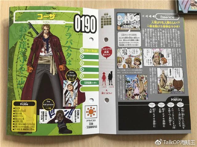 One Piece: Hé lộ thông tin về Người đàn ông nguy hiểm nhất thế giới Monkey D. Dragon, ông bố trong truyền thuyết của Luffy - Ảnh 14.