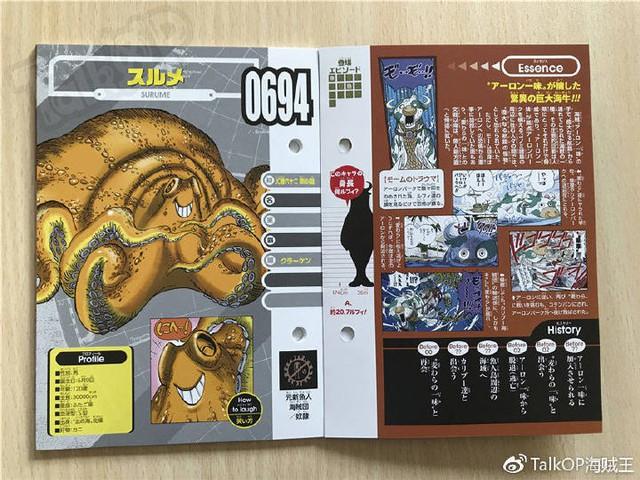One Piece: Hé lộ thông tin về Người đàn ông nguy hiểm nhất thế giới Monkey D. Dragon, ông bố trong truyền thuyết của Luffy - Ảnh 19.